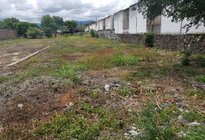 Foto de terreno habitacional en venta en  , san juan, yautepec, morelos, 19429662 No. 01