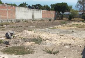Foto de terreno habitacional en venta en  , san juan, yautepec, morelos, 19429670 No. 01