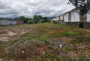 Foto de terreno comercial en venta en  , san juan, yautepec, morelos, 0 No. 01