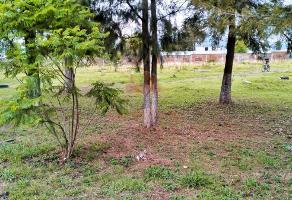 Foto de terreno habitacional en venta en  , san juanito itzicuaro, morelia, michoacán de ocampo, 0 No. 01
