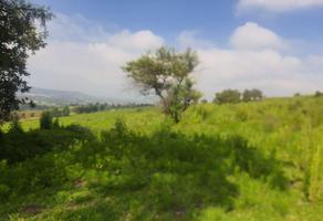 Foto de terreno habitacional en venta en san lorenzo , san lorenzo chimalpa, chalco, méxico, 0 No. 01