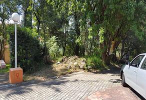 Foto de terreno habitacional en venta en  , san lucas xochimanca, xochimilco, df / cdmx, 0 No. 01