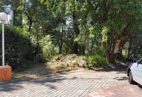 Foto de terreno habitacional en venta en  , san lucas xochimanca, xochimilco, df / cdmx, 6707184 No. 01