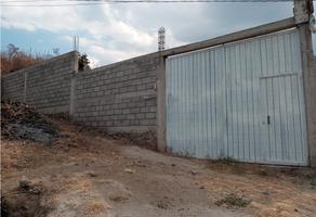 Foto de terreno habitacional en venta en  , san luis tlaxialtemalco, xochimilco, df / cdmx, 0 No. 01