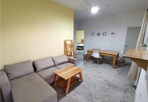 Foto de departamento en renta en  , san manuel, carmen, campeche, 18099117 No. 01