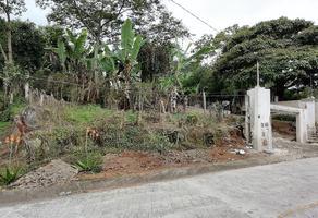 Foto de terreno habitacional en venta en  , san marcos de león (san marcos), xico, veracruz de ignacio de la llave, 10857723 No. 01