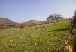 Foto de rancho en venta en  , san marcos, san marcos, jalisco, 6949444 No. 01