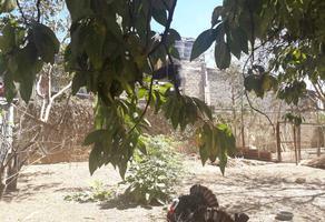 Foto de terreno habitacional en venta en san martin l-15, manzana - 54, z-1 , pueblo nuevo, oaxaca de juárez, oaxaca, 19600452 No. 01