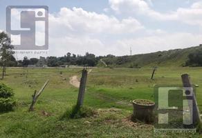 Foto de terreno habitacional en venta en  , san martín obispo, cuautitlán izcalli, méxico, 0 No. 01