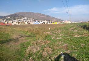 Foto de terreno habitacional en renta en  , san martín toltepec, toluca, méxico, 11707170 No. 01