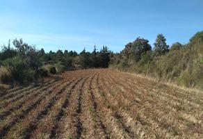 Foto de terreno habitacional en venta en  , san martin xaltocan, xaltocan, tlaxcala, 0 No. 01