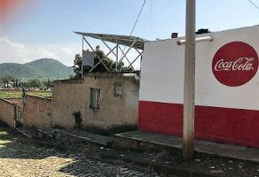 Foto de local en venta en san mateo 28, san miguel cuyutlan, tlajomulco de zúñiga, jalisco, 5744733 No. 02