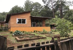 Foto de casa en condominio en renta en san mateo acatitlán , valle de bravo, valle de bravo, méxico, 0 No. 01