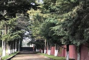 Foto de terreno habitacional en venta en san mateo atenco centro , san mateo atenco centro, san mateo atenco, méxico, 9447949 No. 01