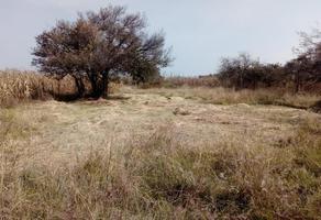Foto de terreno habitacional en venta en san mateo cuanala 1, san mateo cuanala, juan c. bonilla, puebla, 0 No. 01