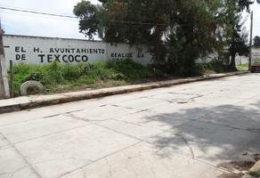 Foto de terreno habitacional en venta en  , san mateo huexotla, texcoco, méxico, 17959852 No. 01