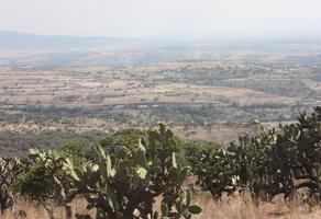 Foto de terreno habitacional en venta en san mateo segunda sección s/n , tepeji, tepeji del río de ocampo, hidalgo, 0 No. 01