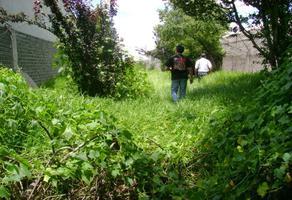 Foto de terreno habitacional en renta en  , san mateo xalpa, xochimilco, df / cdmx, 18346976 No. 01