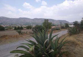 Foto de terreno habitacional en venta en san miguel 0, san miguel tlaixpan, texcoco, méxico, 0 No. 01