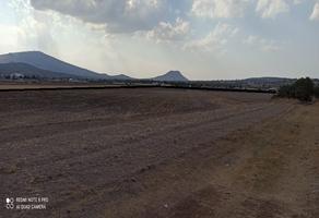 Foto de terreno comercial en venta en san miguel atepoxco , san felipe teotitlán centro, nopaltepec, méxico, 0 No. 01