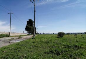 Foto de terreno habitacional en venta en  , real de huejotzingo, huejotzingo, puebla, 11430083 No. 01