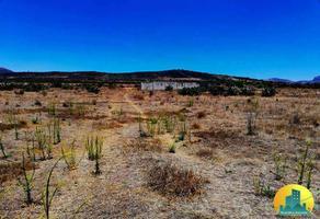 Foto de terreno habitacional en venta en  , san miguel tornacuxtla, san agustín tlaxiaca, hidalgo, 10954054 No. 01