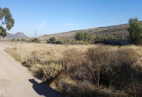 Foto de terreno habitacional en venta en  , san miguel tornacuxtla, san agustín tlaxiaca, hidalgo, 10954060 No. 01