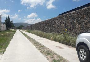 Foto de terreno habitacional en venta en  , san miguel tornacuxtla, san agustín tlaxiaca, hidalgo, 12336331 No. 01