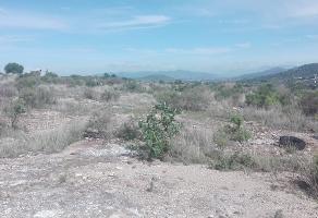 Foto de terreno comercial en venta en  , san miguel tornacuxtla, san agustín tlaxiaca, hidalgo, 0 No. 01