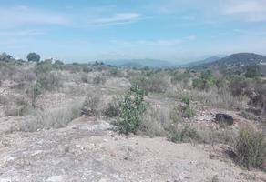 Foto de terreno comercial en venta en  , san miguel tornacuxtla, san agustín tlaxiaca, hidalgo, 7304081 No. 01
