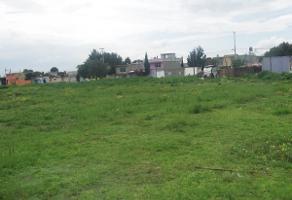 Foto de terreno habitacional en venta en  , san miguel xaltocan, nextlalpan, méxico, 0 No. 01