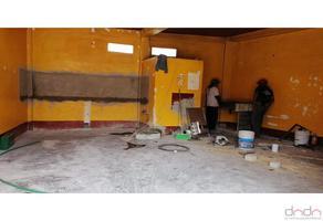Foto de local en renta en  , san miguel xochimanga, atizapán de zaragoza, méxico, 12828272 No. 01