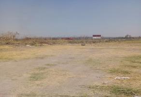 Foto de terreno habitacional en venta en san miguel , zapotlanejo, zapotlanejo, jalisco, 0 No. 01