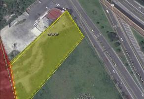 Foto de terreno habitacional en renta en  , san nicolás de los garza centro, san nicolás de los garza, nuevo león, 11811867 No. 01