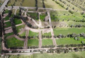 Foto de terreno habitacional en venta en san nicolás , san nicolás de arriba, aguascalientes, aguascalientes, 0 No. 01