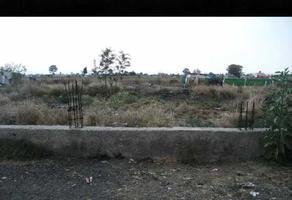 Foto de terreno habitacional en venta en san pablo atlazalpan , san pablo atlazalpan, chalco, méxico, 18067369 No. 01