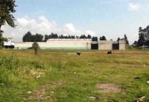 Foto de terreno habitacional en venta en  , san pablo autopan, toluca, méxico, 13768374 No. 01