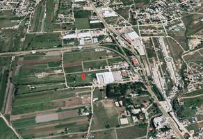 Foto de terreno habitacional en venta en  , san pablo etla, san pablo etla, oaxaca, 0 No. 01