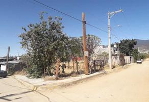 Foto de terreno habitacional en venta en san pablo s/n , san isidro, oaxaca de juárez, oaxaca, 0 No. 01