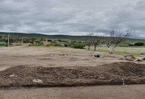 Foto de terreno habitacional en venta en  , san pablo villa de mitla centro, san pablo villa de mitla, oaxaca, 17767722 No. 01