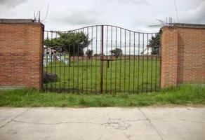 Foto de terreno habitacional en venta en  , san pedro, almoloya de juárez, méxico, 0 No. 01