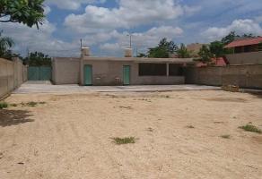 Foto de terreno habitacional en renta en  , san pedro cholul, mérida, yucatán, 11782076 No. 01