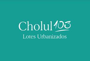 Foto de terreno habitacional en venta en  , san pedro cholul, mérida, yucatán, 18522727 No. 01