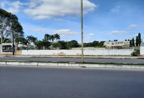 Foto de terreno habitacional en venta en  , san pedro cholul, mérida, yucatán, 18895569 No. 01