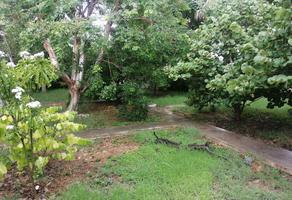 Foto de terreno habitacional en venta en  , san pedro cholul, mérida, yucatán, 19691379 No. 01