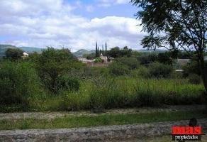 Foto de terreno habitacional en venta en  , san pedro de los hernandez, león, guanajuato, 11775843 No. 01
