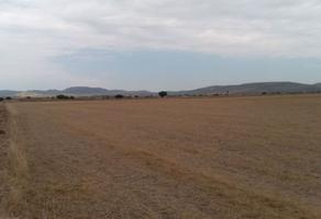 Foto de terreno comercial en venta en  , san pedro huaquilpan, zapotlán de juárez, hidalgo, 15421657 No. 01