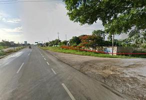 Foto de terreno habitacional en venta en  , san pedro, kanasín, yucatán, 0 No. 01