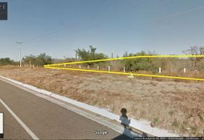 Foto de terreno comercial en venta en  , san pedro, la paz, baja california sur, 2258301 No. 03