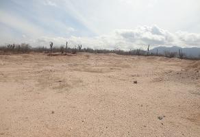 Foto de terreno comercial en venta en  , san pedro, la paz, baja california sur, 2596049 No. 01